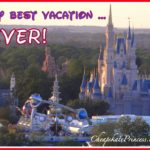 Don't Get Sick on a Disney Vacation: A Cheapskate Princess Guide