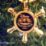 Why this $12 Item May Be the Best Disney World Souvenir Ever!