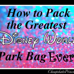 How to Pack the BEST Disney World Theme Park Bag Ever!