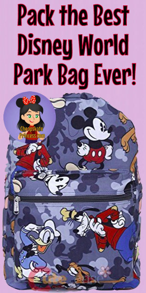 Disney World backpack, Disney World park bag