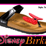 Can You Afford Disney by Birki's Sandals?