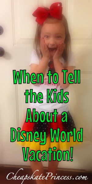 Come See Us At Disneys Cheapskate Princess On Facebook And Pinterest