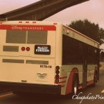 Understanding Disney World Bus Transportation: A Cheapskate Princess Guide
