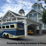 How to Avoid (YUK!) Bedbugs at Walt Disney World