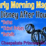 Early Morning Magic & Disney After Hours: A Cheapskate Guide