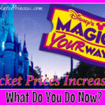 Disney Ticket Prices Just Went Up, So What Can You Do?