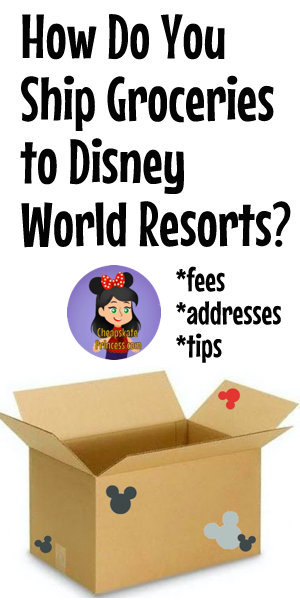 box shipped to a Disney World resort