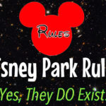Official Rules of the Disney Parks (Yes, There are Actually Rules!)