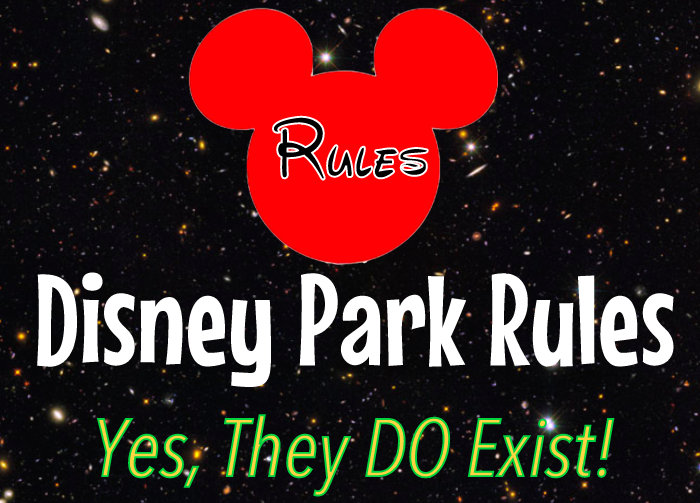 ec0fd370aa9 Official Rules of the Disney Parks (Yes