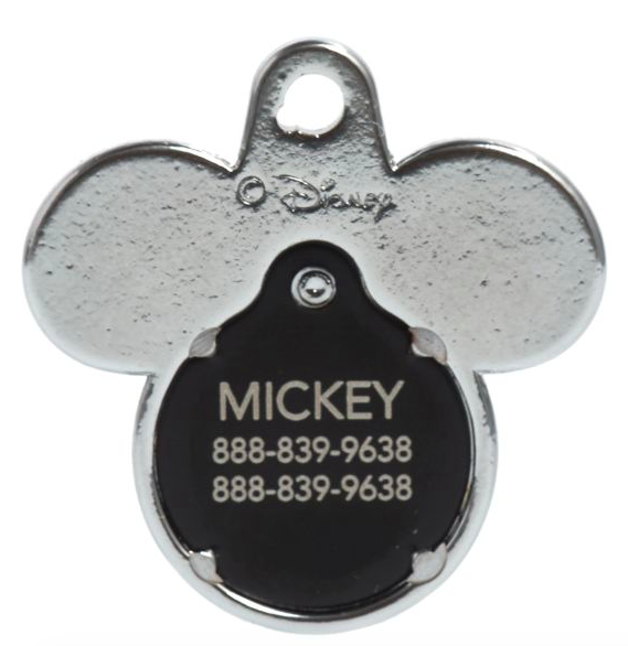 Disney themed Mickey ID tag for vacations